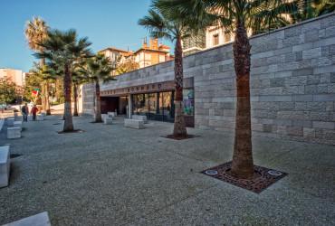 museo bonnard